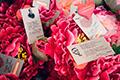 открыть фотогалерею 14 февраля 2013 года. День Святого Валентина!